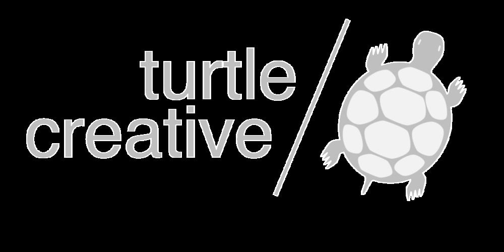 Clipart turtle river turtle. Creative