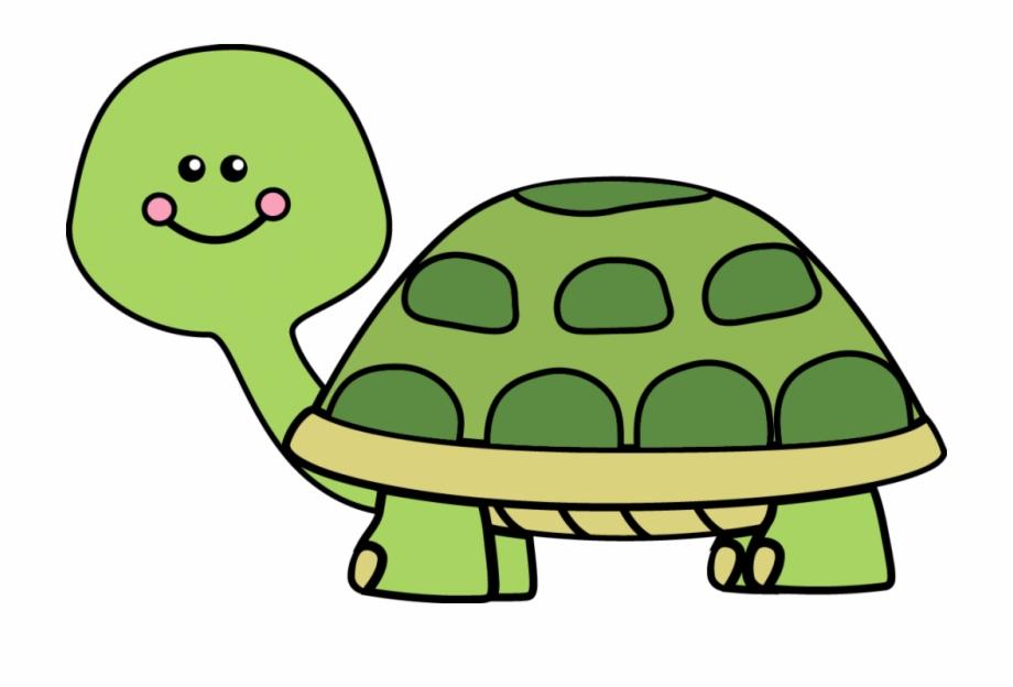 Box pngtube . Clipart turtle tutle
