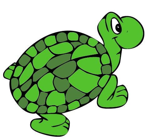 Green clip art panda. Clipart turtle tutle