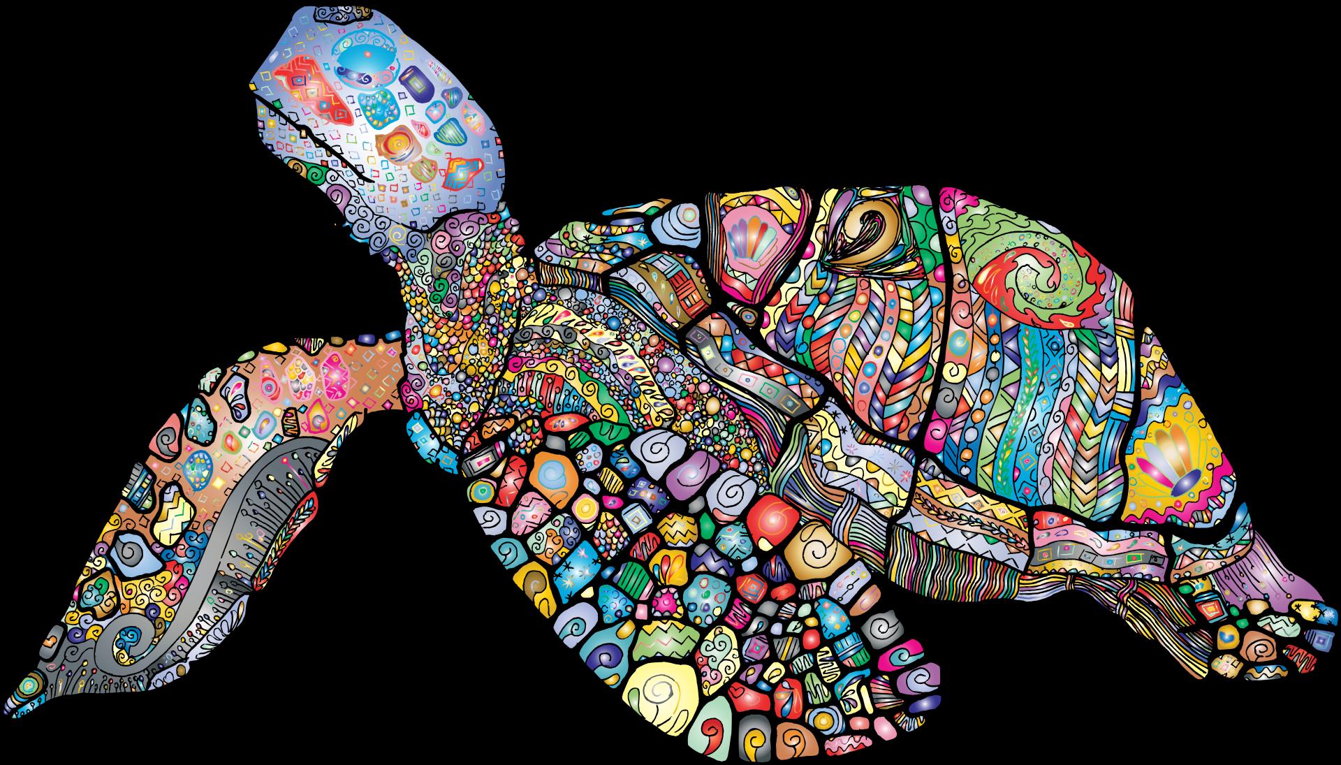 Art best cartoon drawing. Clipart turtle vector