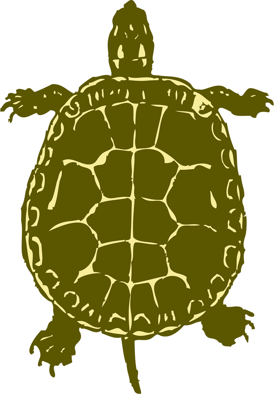 Clipart turtle vector. Sea snapping pencil and