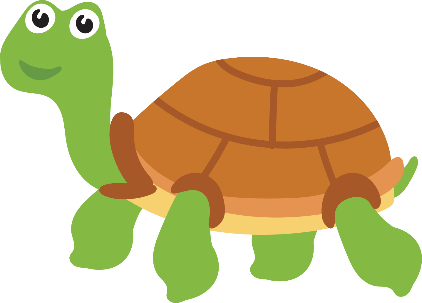 Clipart turtle vector. Sea tortoise hand painted