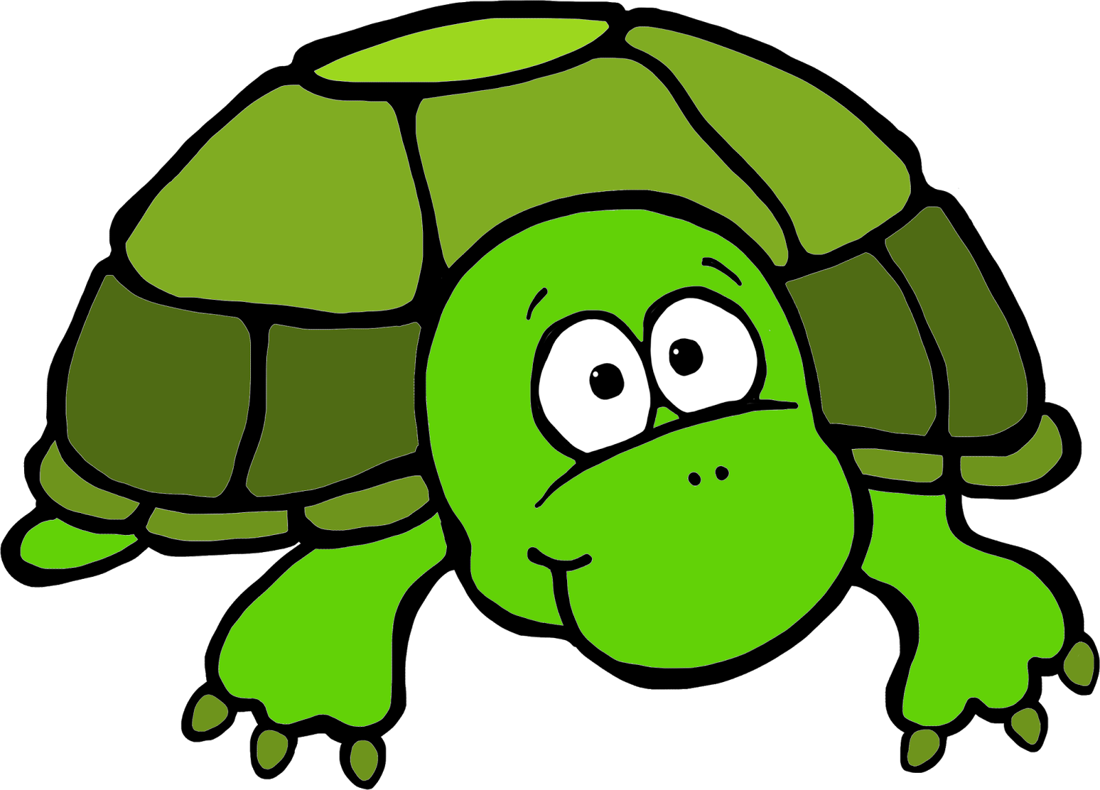Clipart turtle water. Funny