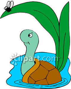 Clipart turtle water. Cartoon in royalty free