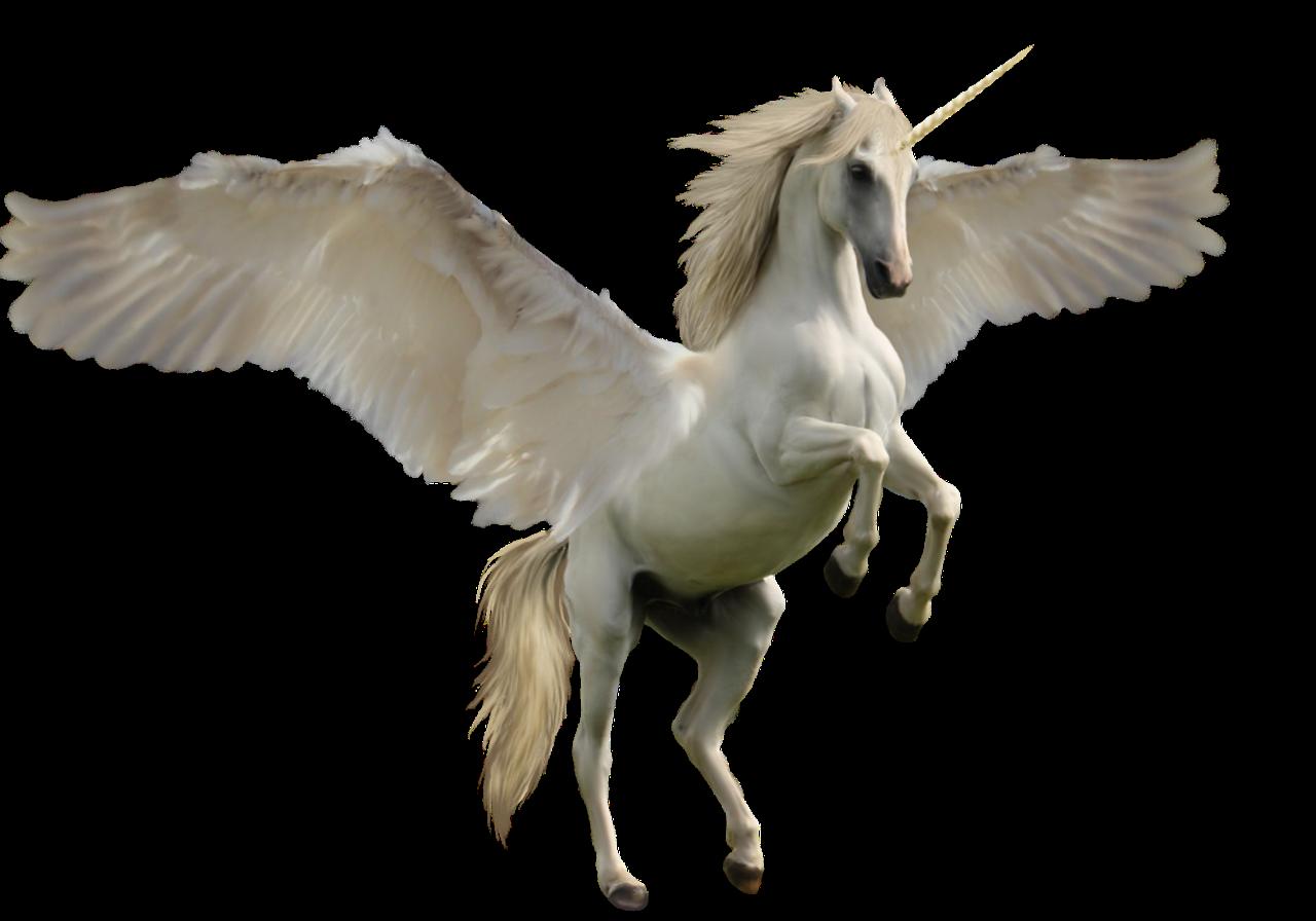 Clipart unicorn pegasus. Clip art transprent png
