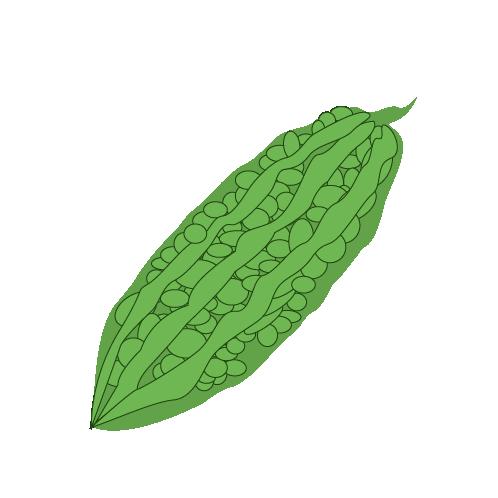 X free clip art. Vegetables clipart ampalaya