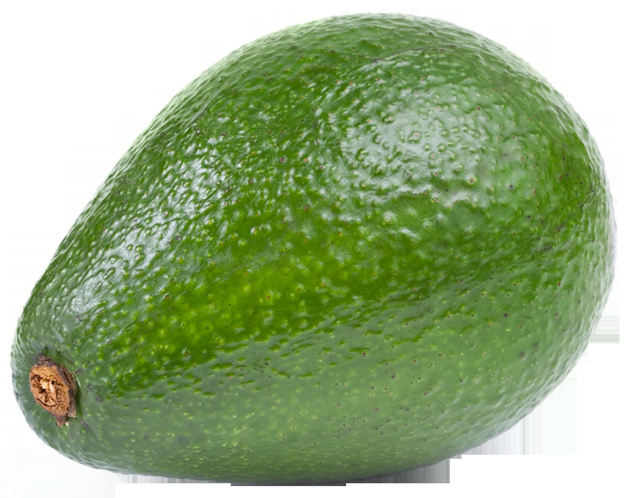 Large avocado png fruit. Fruits clipart bush