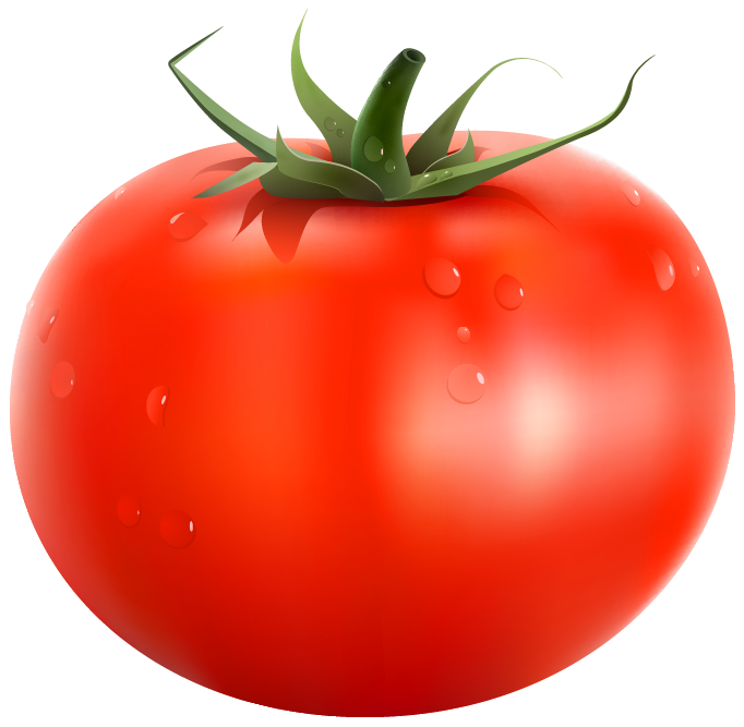 Kind clipart transparent. Tomato png picture gallery
