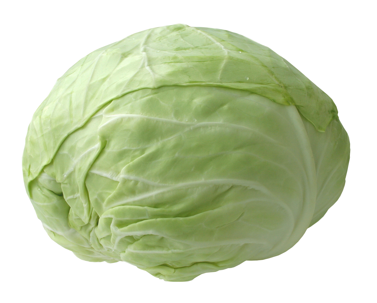 Clipart vegetables cabbage. Fresh png image purepng