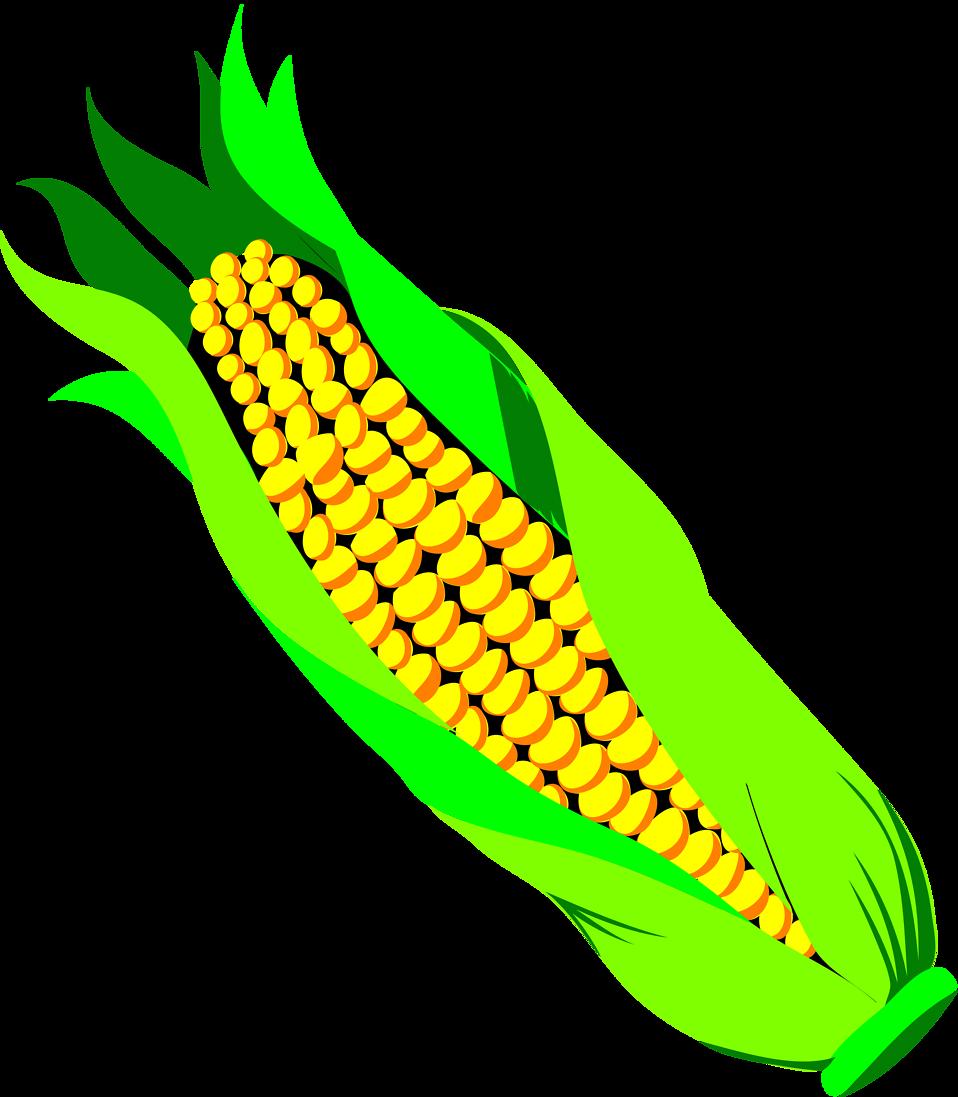 Tomatoes clipart lukisan. Corn free stock photo