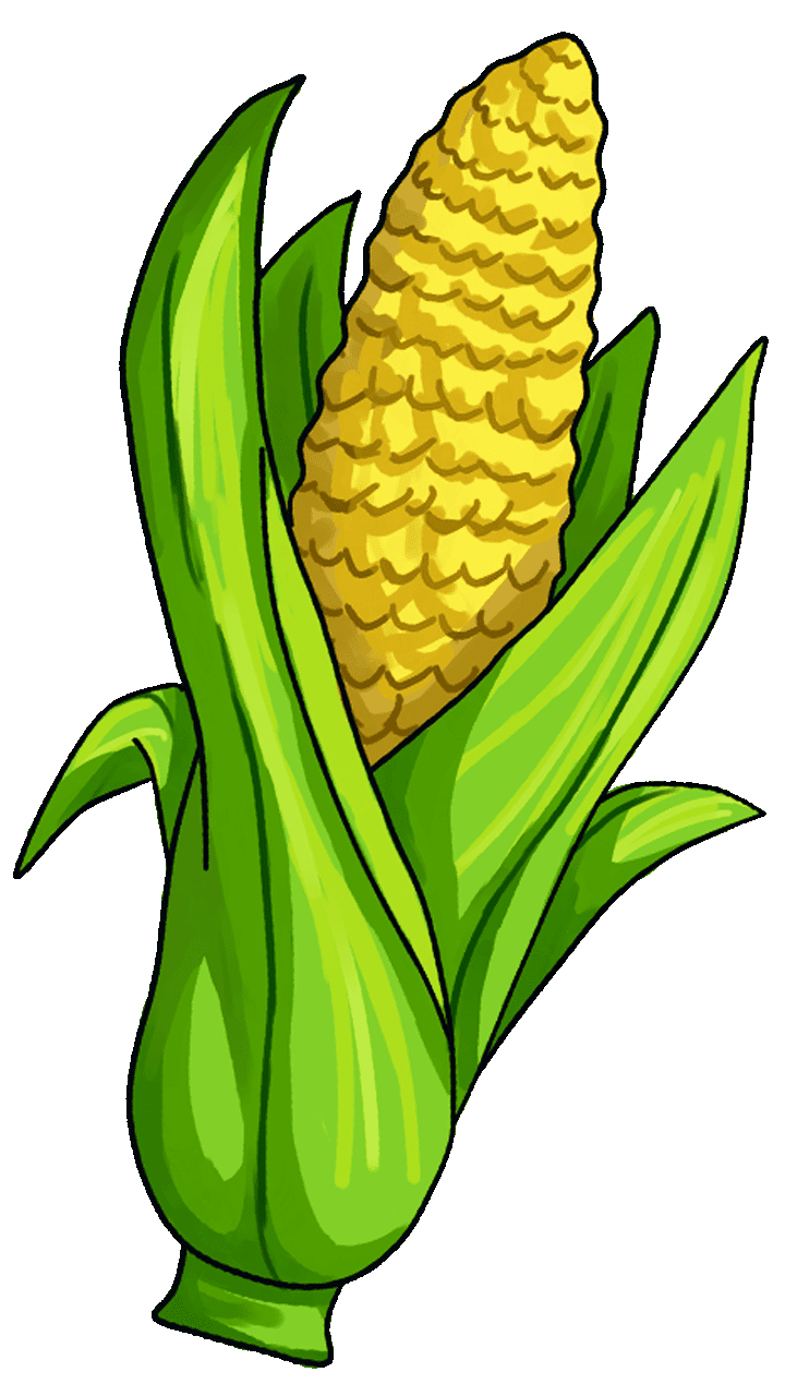 Cucumber clipart animated. Corn on the cob