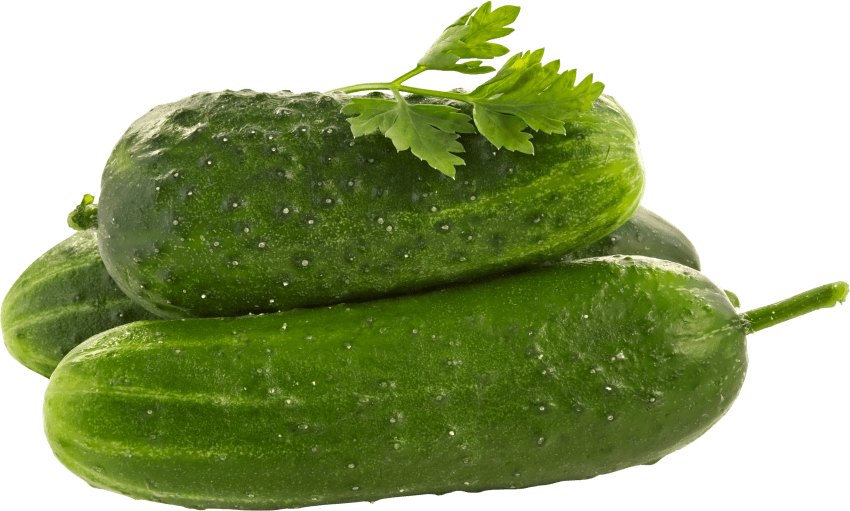 Png free images toppng. Vegetables clipart cucumber
