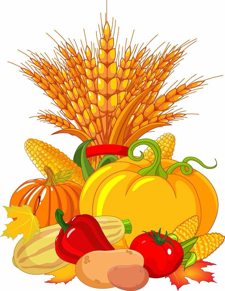 Fall station . Vegetables clipart fair