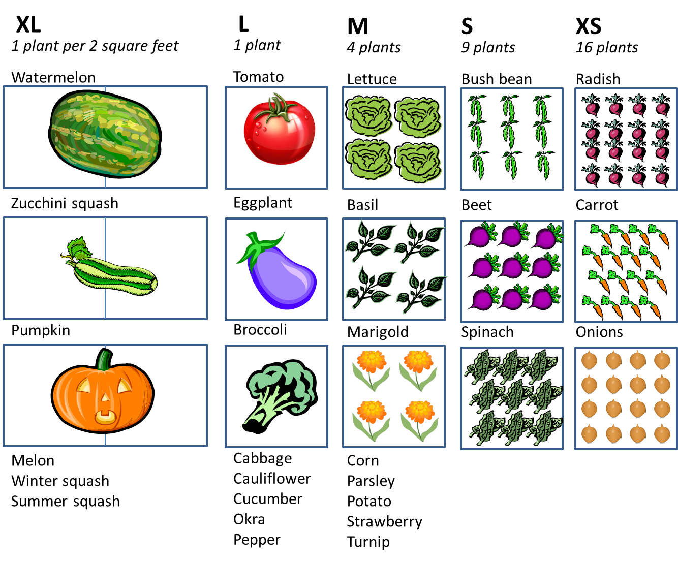 Gardening clipart kitchen garden. How much space do