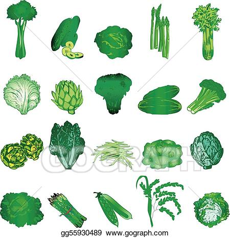 Vector art veggies eps. Clipart vegetables green vegetable