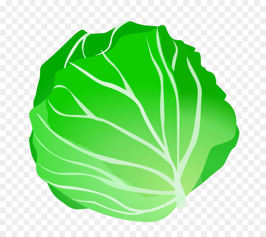 Clipart vegetables green vegetable. Leaf background cabbage food