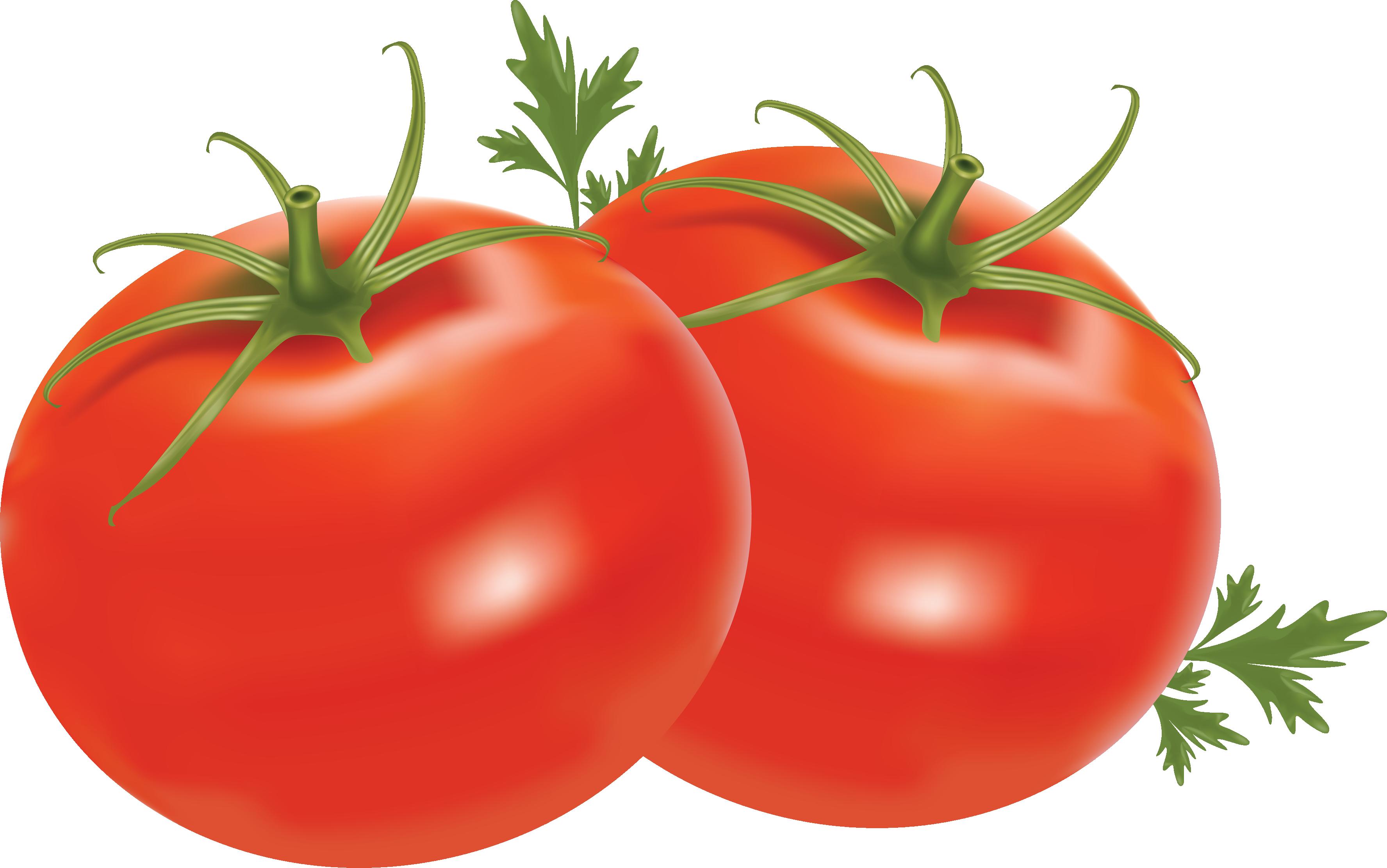 Harvest vegitables