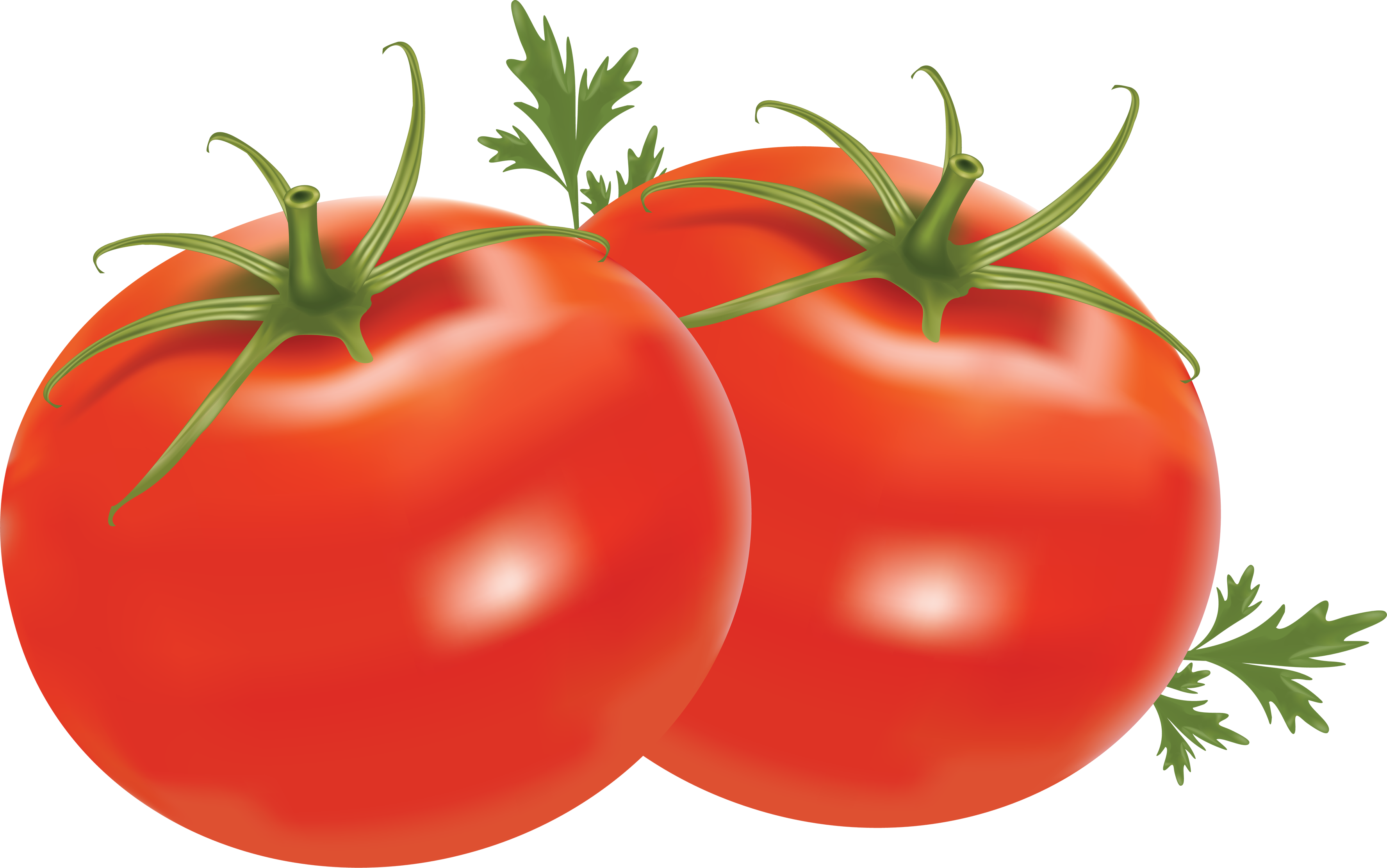 Pear clipart jambu. Tomato png image clip