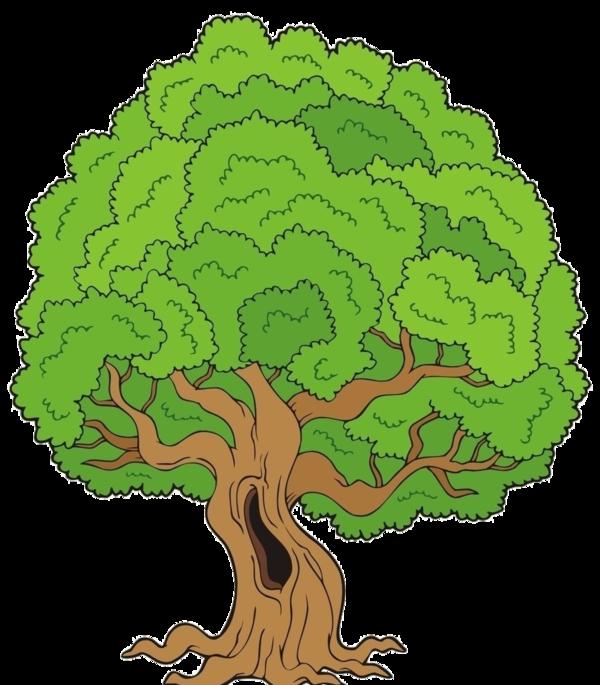 Kid clipart seasons.  trees stromy pinterest