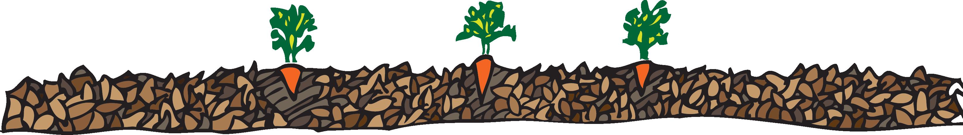 Gardener clipart vegetable patch. Grow vegetables easily using