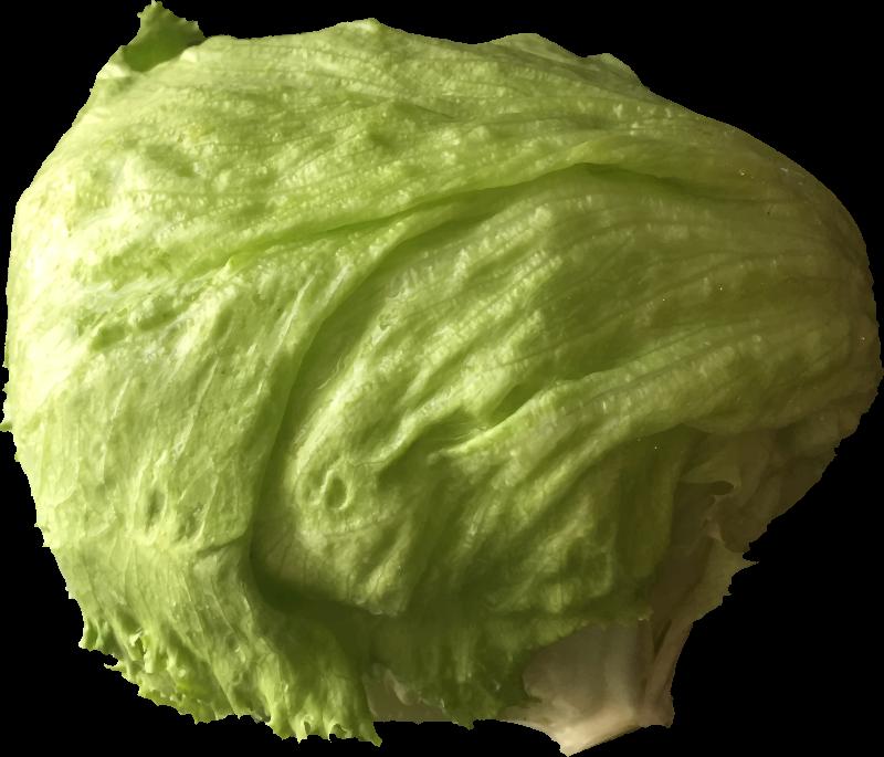 Lettuce medium image png. Clipart vegetables leafy vegetable