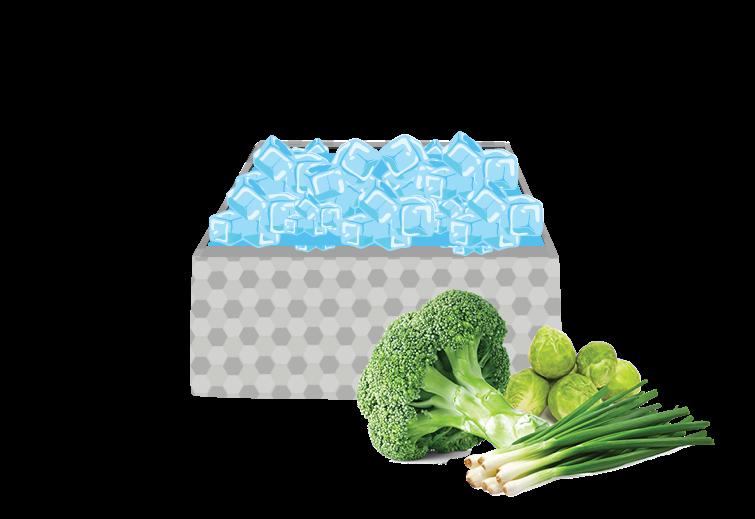 Pre cooling methods for. Clipart vegetables leafy vegetable