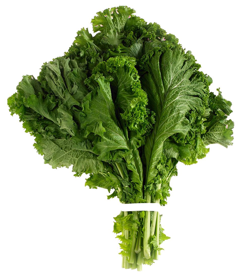Clipart vegetables leafy vegetable. Mustard greens png image
