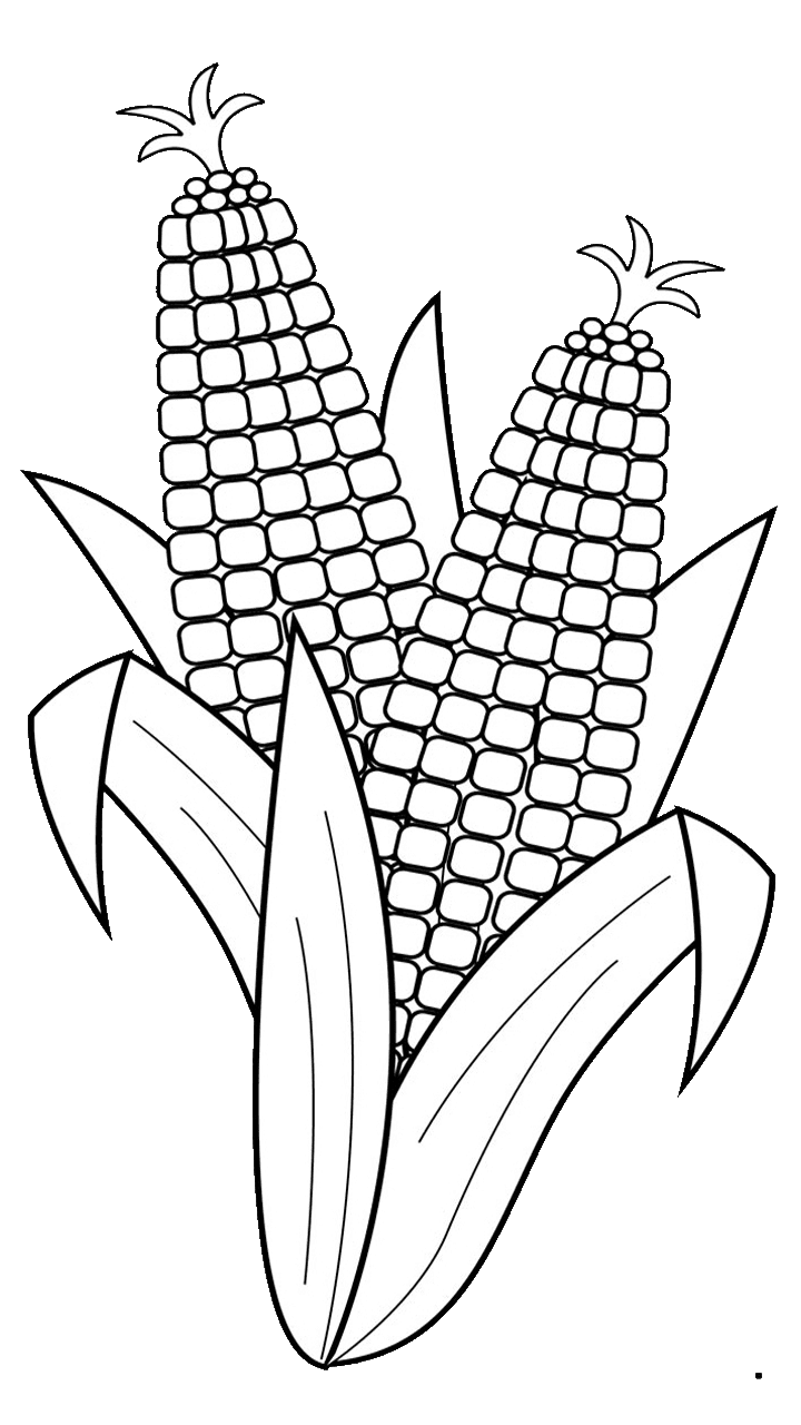 surprising for free. Vegetables clipart corn