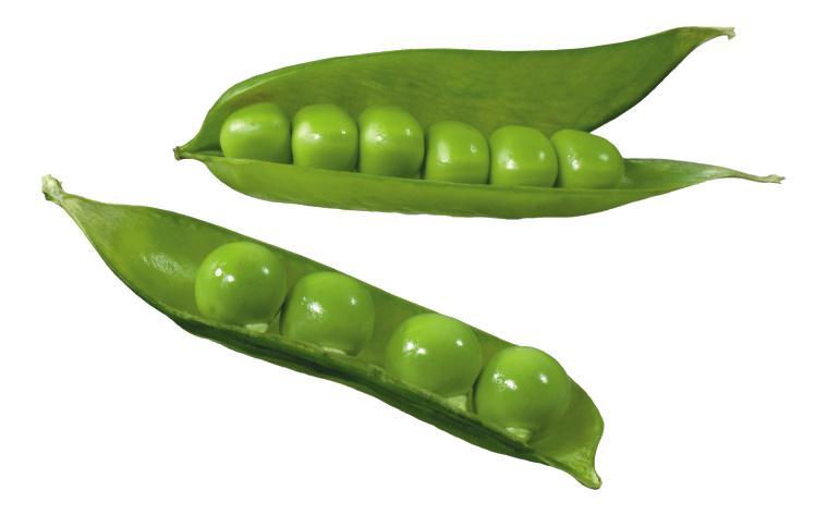 Split silique common bean. Clipart vegetables pea