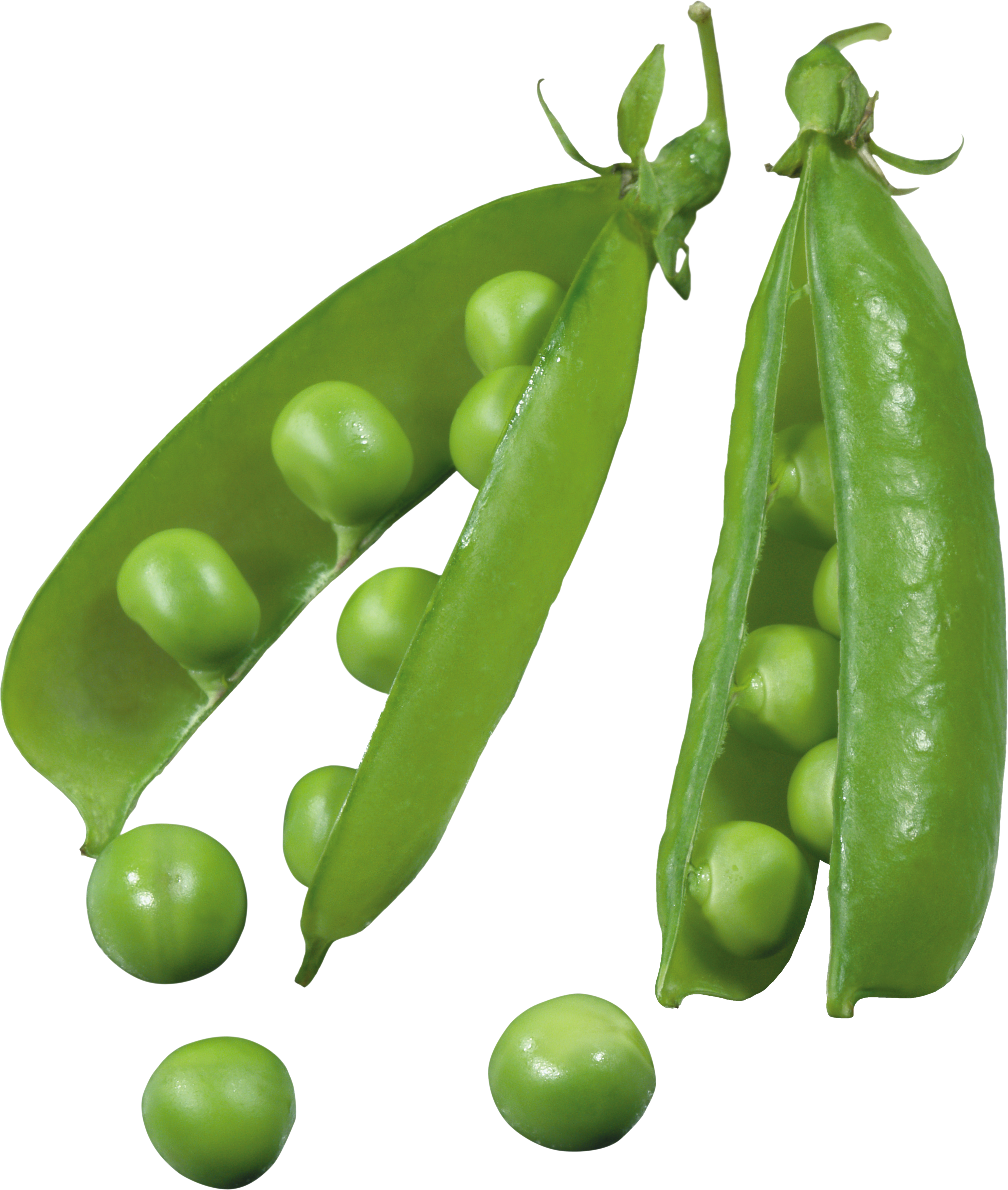 Png . Clipart vegetables pea