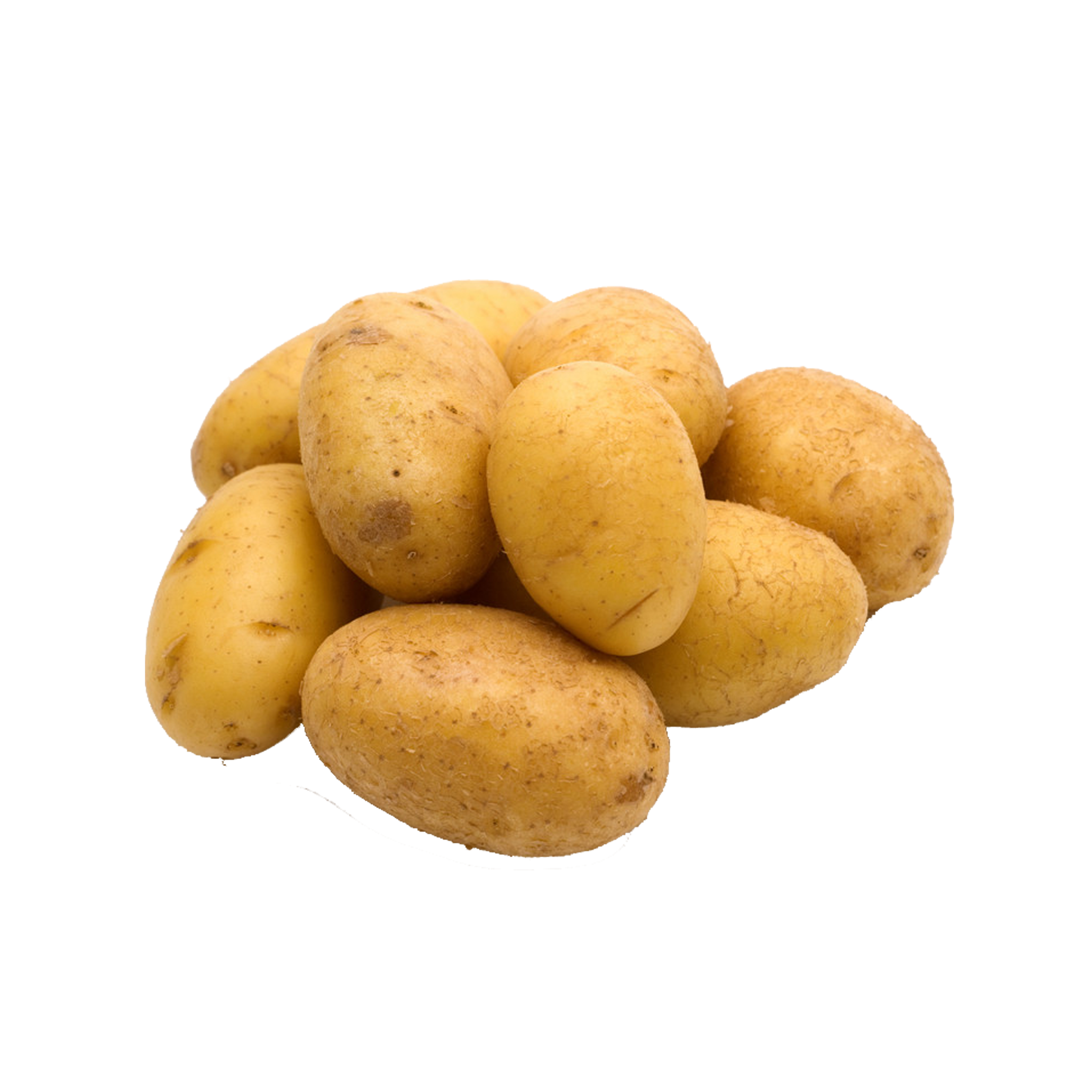 Potato clipping path clip. Roots clipart tuberous