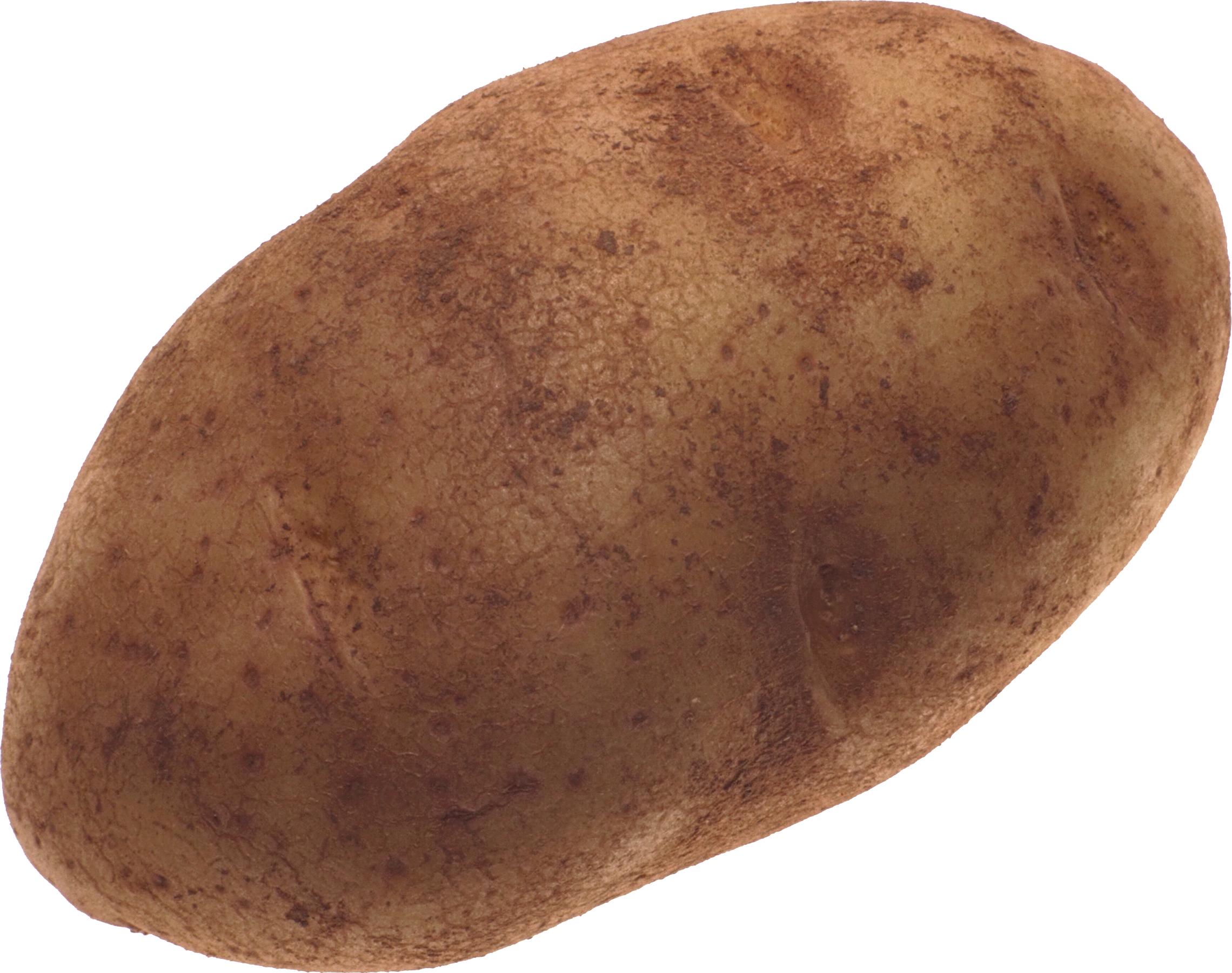 Clipart vegetables potato. High quality png web