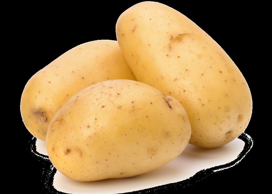 Clipart vegetables potato. Png transparent images all