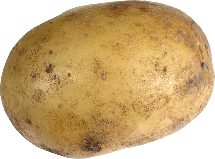 Png free images toppng. Clipart vegetables potato
