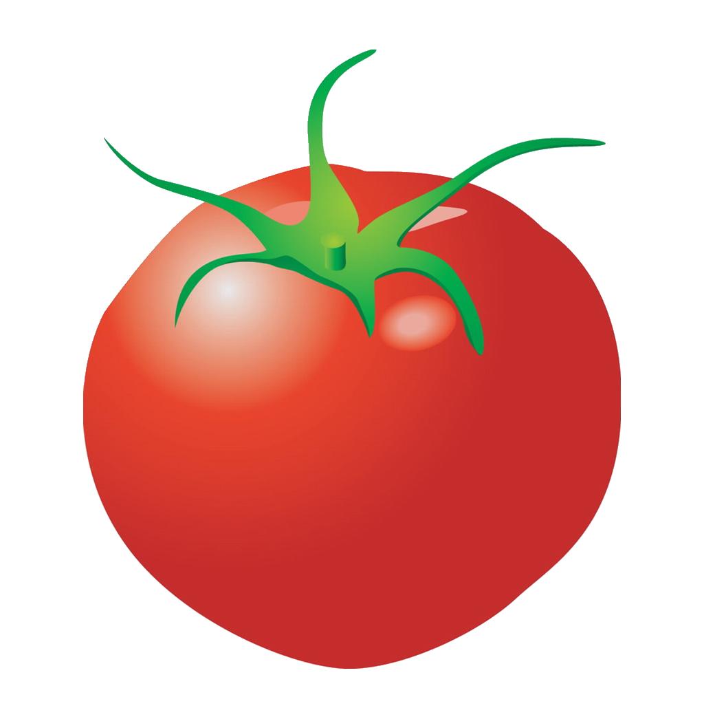 Strawberries clipart bush. Plum tomato cartoon clip