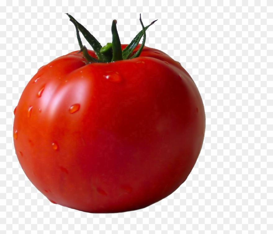 Lettuce single vegetable transparent. Clipart vegetables tomato