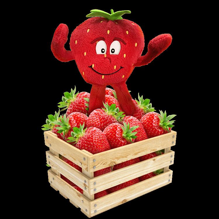 Health healthy food