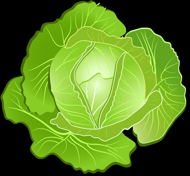 png pinterest clip. Clipart vegetables vegy