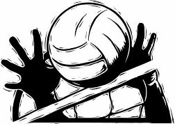 Volleyball clipart. Awesome and free court