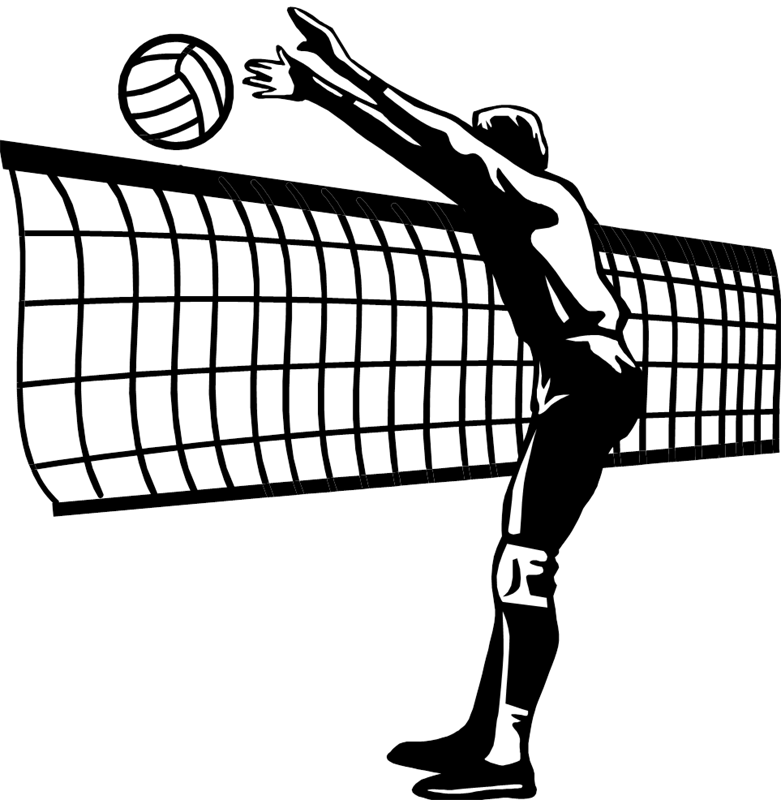 Imleagues men indiana university. Clipart volleyball champions