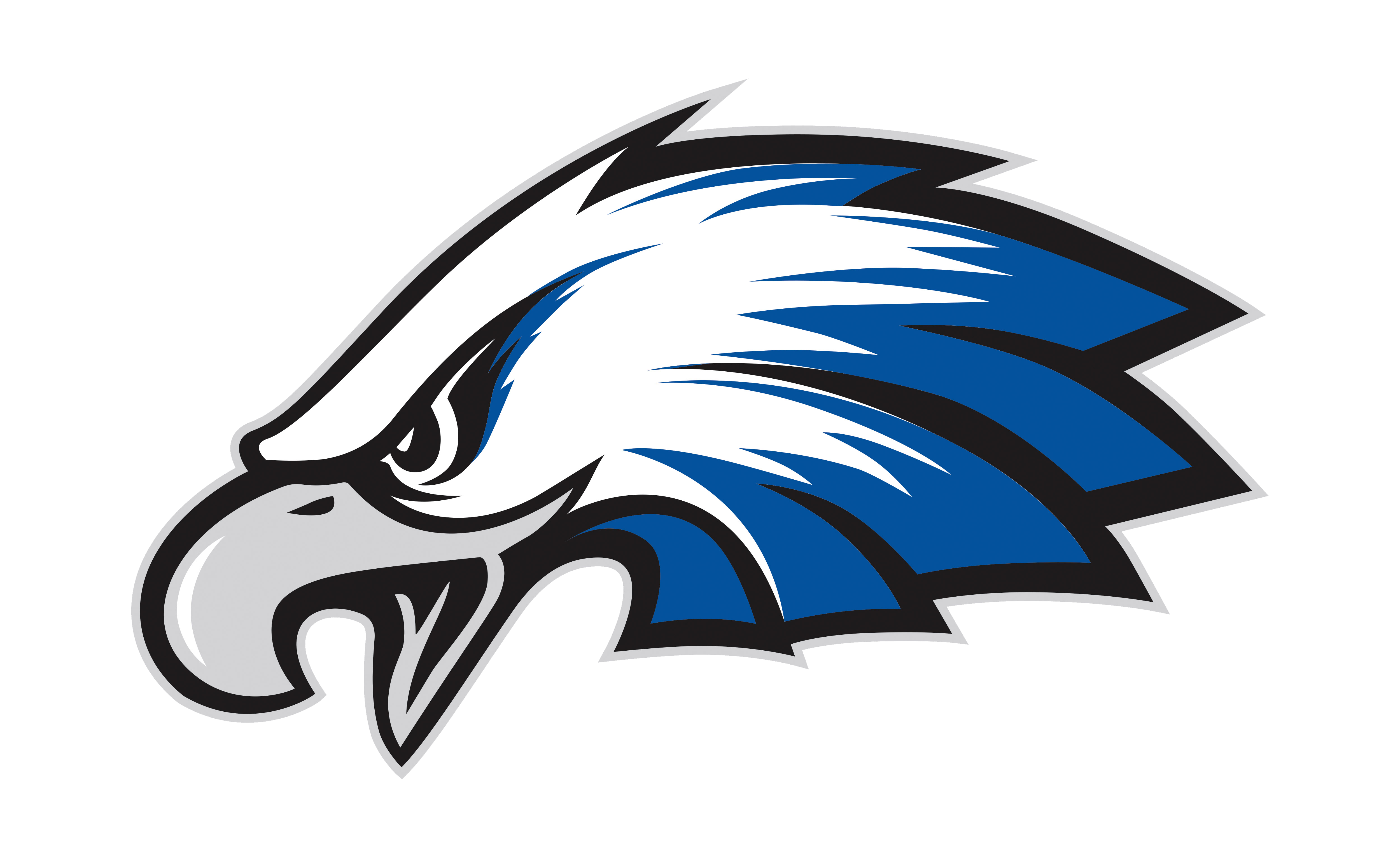 Lakeland team home eagles. Clipart volleyball eagle