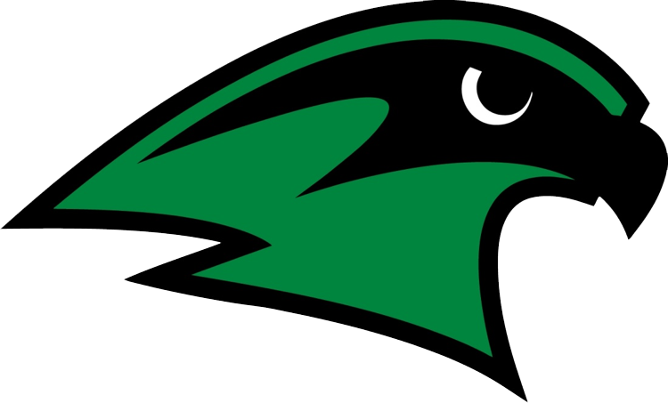 Staley girls c gold. Clipart volleyball falcon