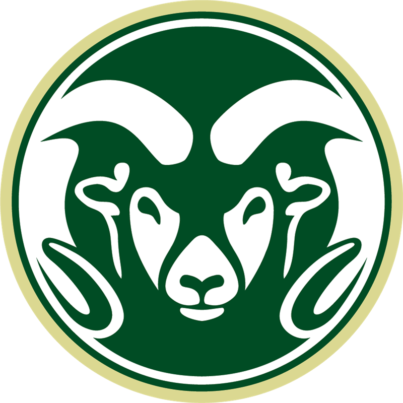 Volleyball clipart intramural sport. Imleagues colorado state university