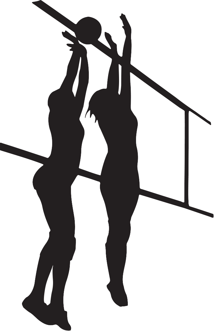 Shadow clip art setter. Silhouette clipart volleyball