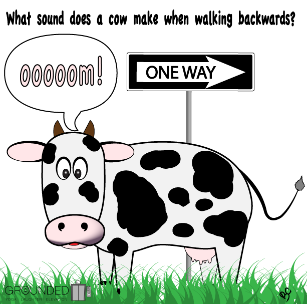 Clipart walking backward. Today is national cow