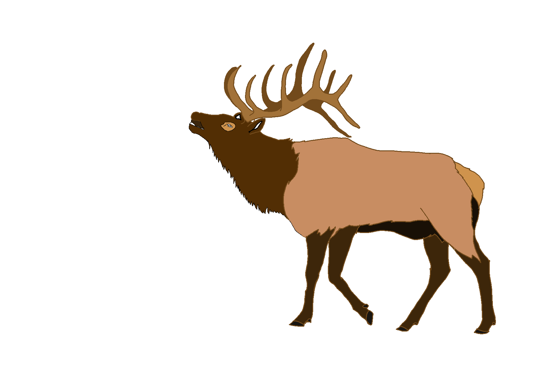 Hunting clipart elk. Free images at clker