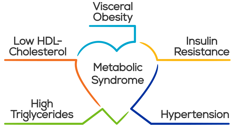 Clipart walking metabolic. Syndrome criteria causes risk
