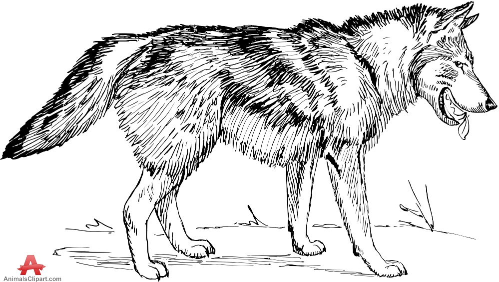 Wolves clipart nature. Walking wolf in drawing