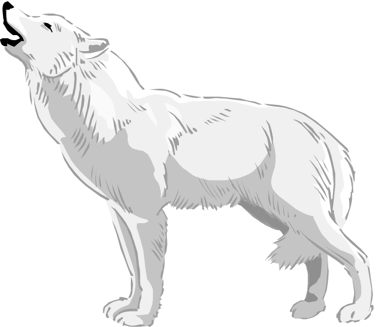 Wolf clipart clip art. Free white