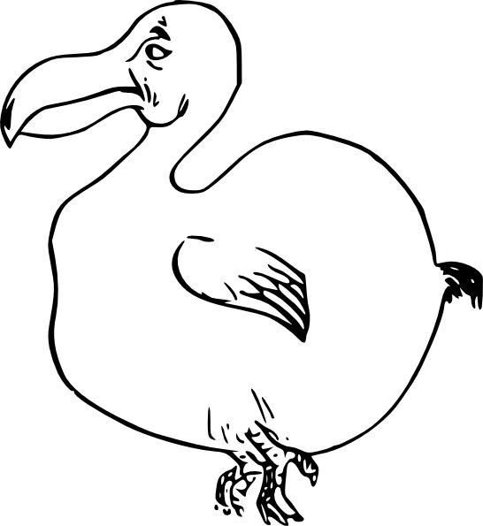 Dodo bird clip art. Clipart water outline